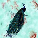 peacock by Suzanne  Carter