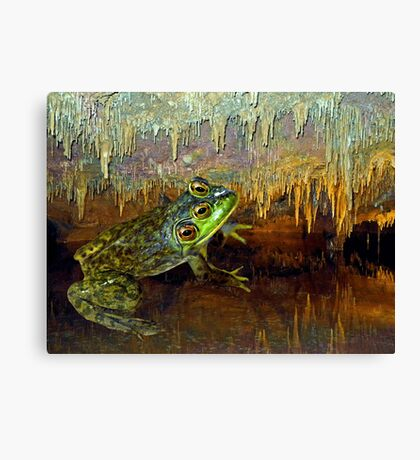 Triopse Frog in a Cave Fantasy Canvas Print