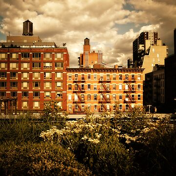 Storm Clouds Over the Chelsea Skyline - High Line - New York City de vgucwaphoto