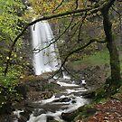 Melincwrt Falls – autumn by Jane Corey