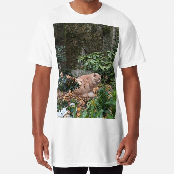 Cat-mouflaging in France Long T-Shirt