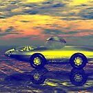 Chrome Bryce Car by Ann Morgan
