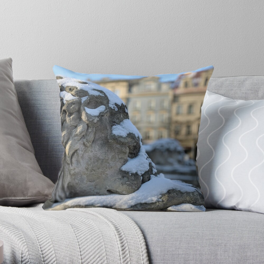 Cold lion in Krakow Throw Pillow
