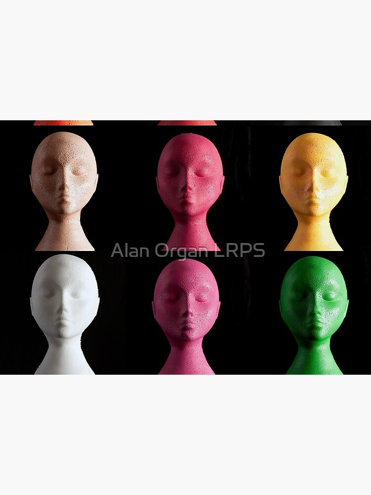 Polystyrene Heads - A Typology by AlanOrgan