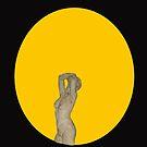 Transit of venus by Steve  Woodman