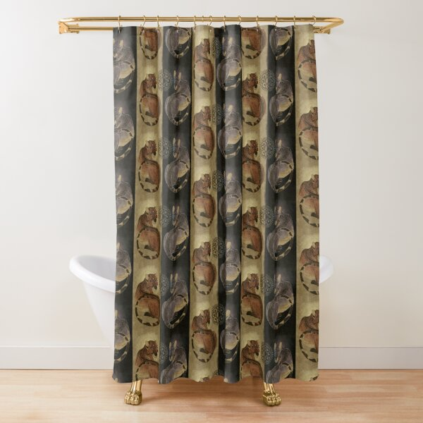 Bhrama tōṛakara Shower Curtain