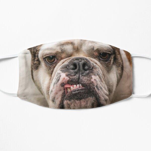 Fabulous Bulldog Mask