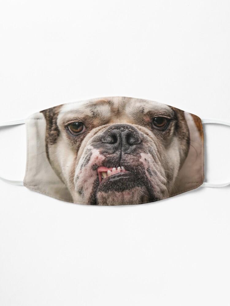 Alternate view of Fabulous Bulldog Mask