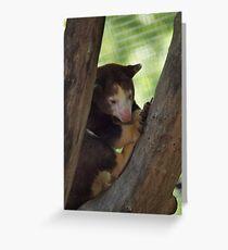 Kansas city Zoo  Greeting Card