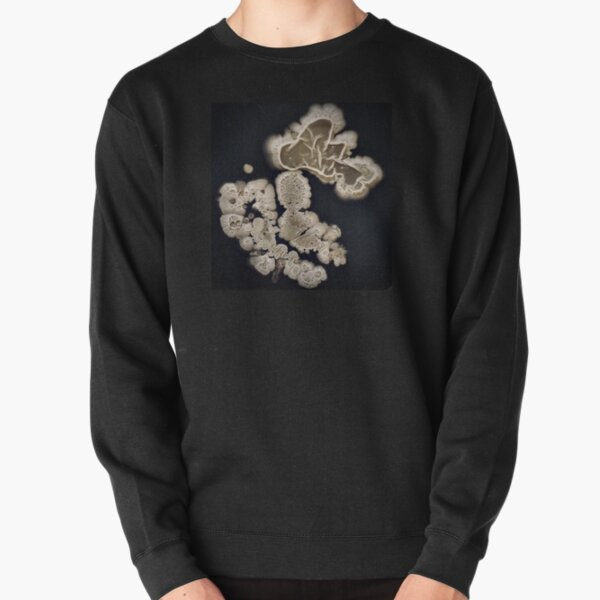 What's on Your Shoe? Pullover Sweatshirt