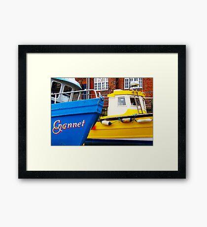 Gannet and Skylark Framed Print