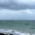 The Skyway on a stormy day by Laurie Perry
