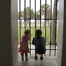 Let us out! by Laurie Perry