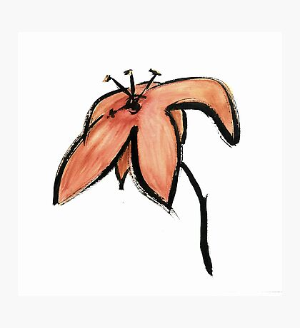 bloom ~ haiga XIV Photographic Print