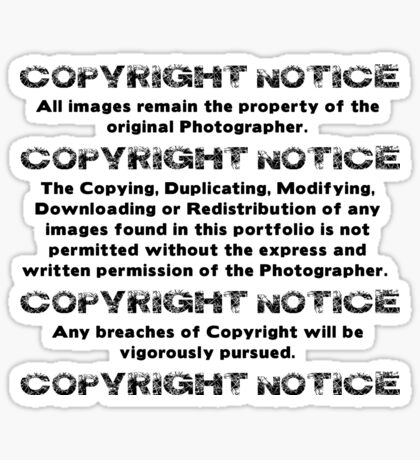 COPYRIGHT NOTICE Sticker