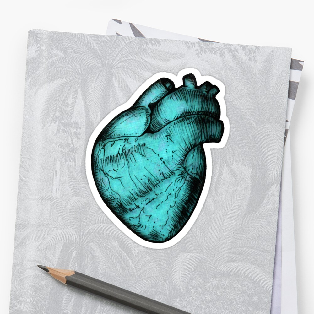 Anatomical Heart - Cyan Sticker by Squidy
