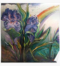 Iris, Rainstorm, Rainbow Poster