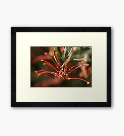 Green Elbows Framed Print
