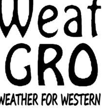 WA Weather Group Sticker  Sticker