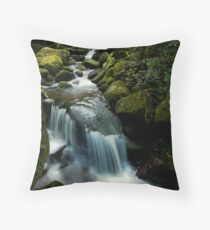 wairere gully drift Throw Pillow