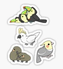Burd Stickers Sticker