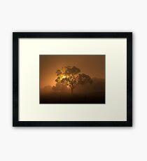 Golden Misty Silhouette Framed Print