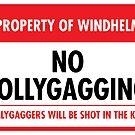 Windhelm Municipal Ordinance (Sticker) by Eozen