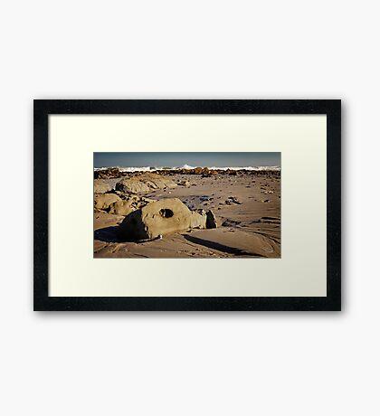 Mussel Graveyard Framed Print
