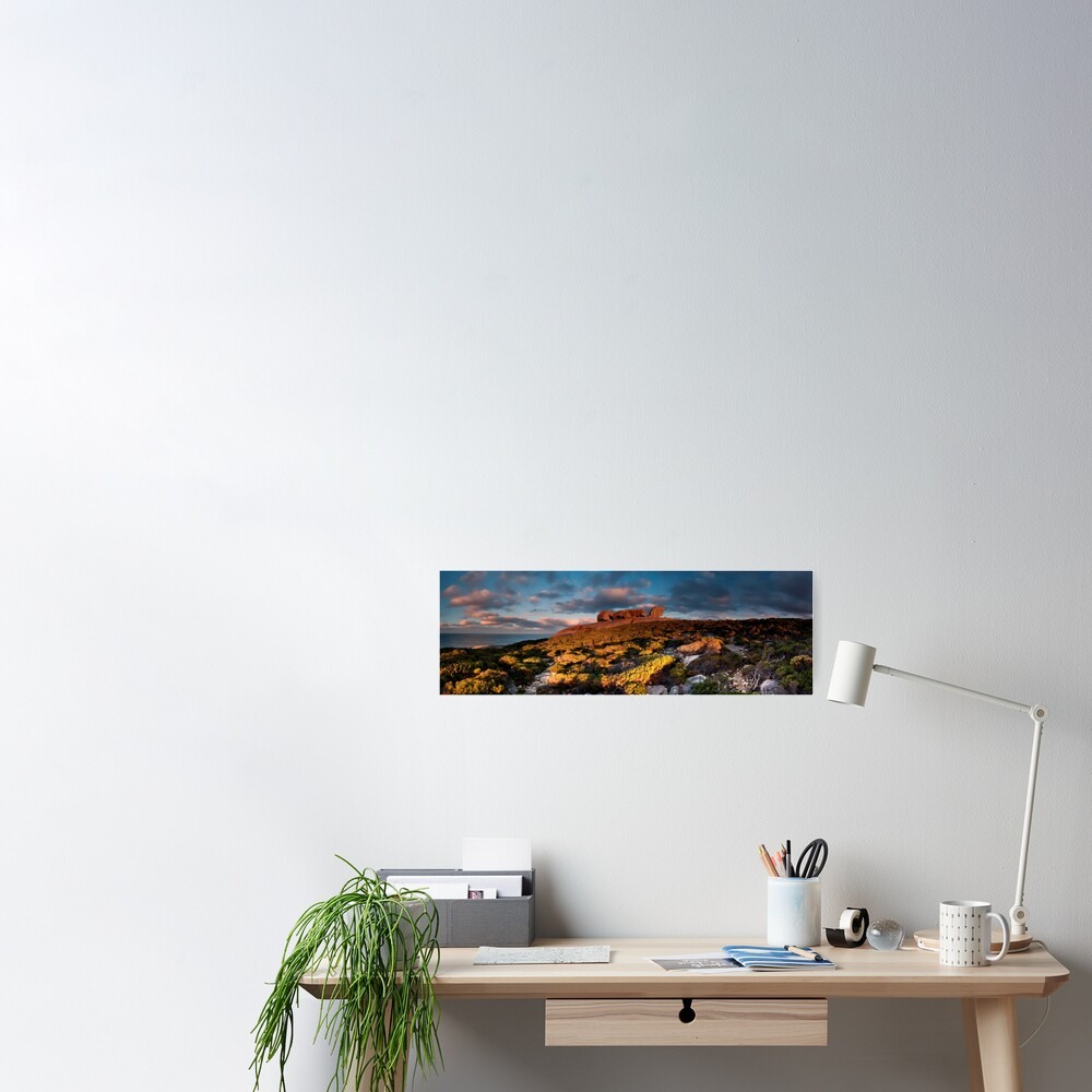Remarkable Rocks Pano Poster