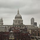St Paul's Cathedral by Jayne Le Mee