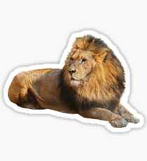 Lion Sticker