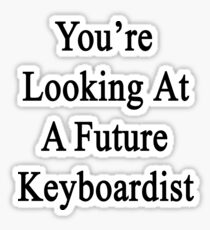 You're Looking At A Future Keyboardist Sticker
