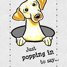 Yellow Lab Popping In Any Occasion Card by offleashart