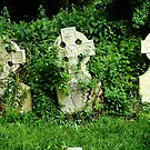 Three headstones in a forgotten corner by thermosoflask