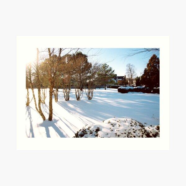 Serenity And Sunshine Art Print