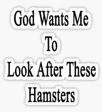 God Wants Me To Look After These Hamsters Sticker