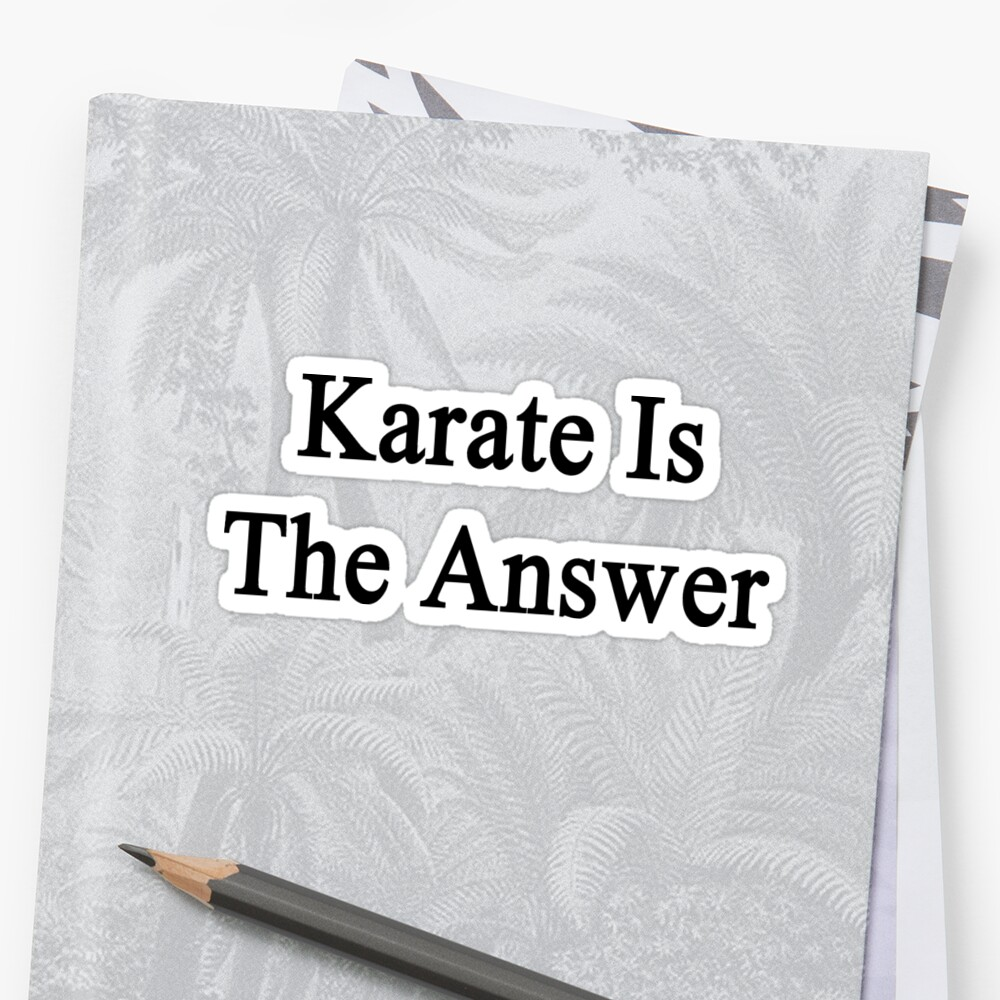 Karate Is The Answer by supernova23