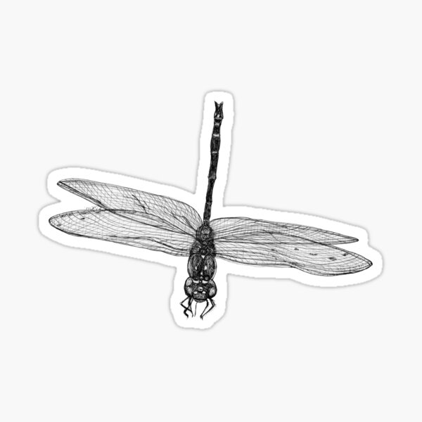 Marie the Dragonfly  Sticker