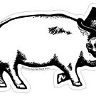 Pig Sticker by RTWShirts