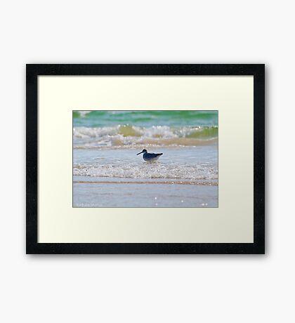 Splashing in the Sea Framed Print