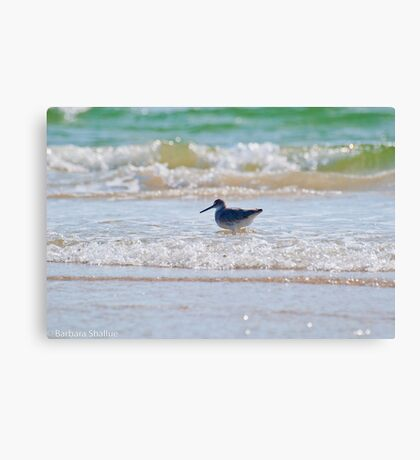 Splashing in the Sea Canvas Print