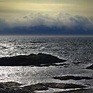 Winter Sea, Winter Sky by Jann Ashworth