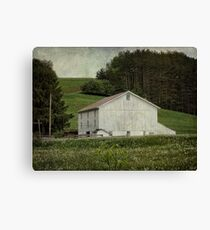 Time to cut the grass Canvas Print