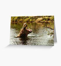 Hippo in the Zambesi Greeting Card