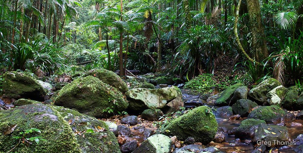 Terania Creek Rocks by Greg Thomas