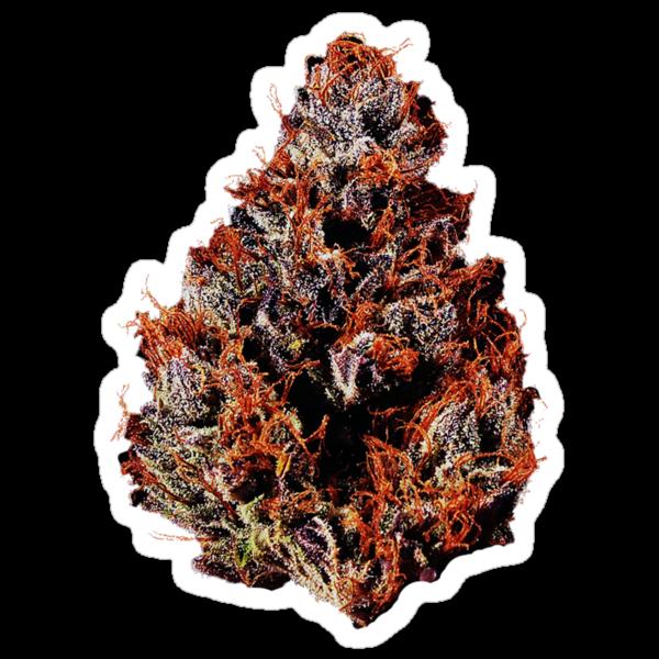 Literally Purple Kush  by lilpoisonberryy
