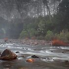 Mersey river near mole creek by Claire Walsh