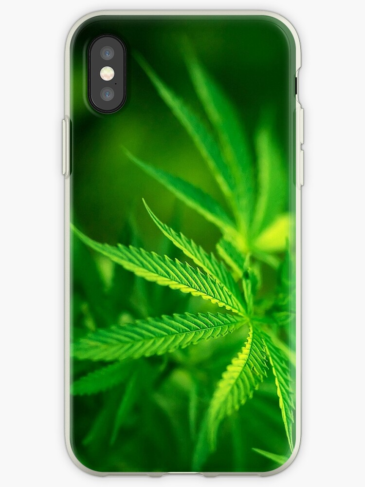 Marijuana iphone case 4/4s by RLdesigns