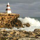 Rugged Coast by hans p olsen
