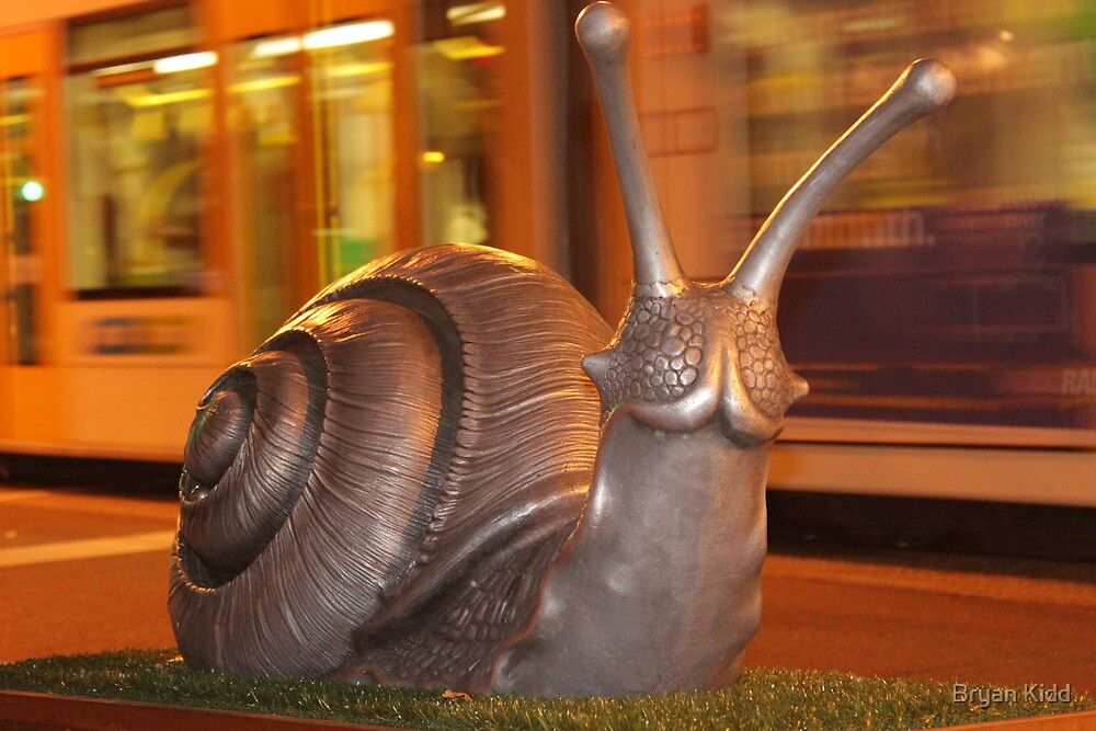 Snails Pace Two by Bryan Kidd